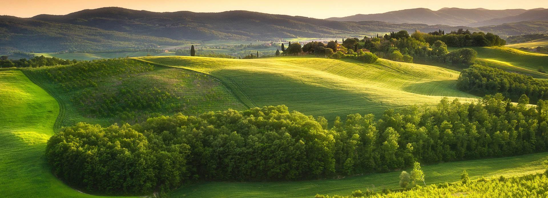 Photo de paysage valloné et verdoyant d'une naturopathe à Bordeaux